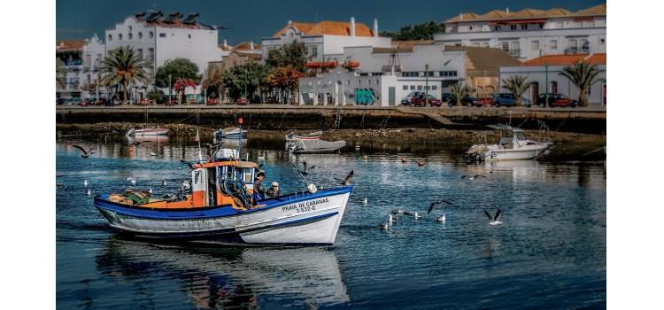 Nueva hoja de ruta para que la industria pesquera de España sea más sostenible