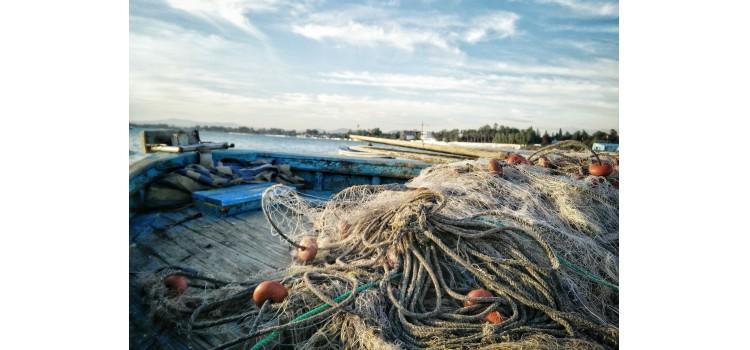 Aprobadas las ayudas a la paralización temporal de la actividad pesquera