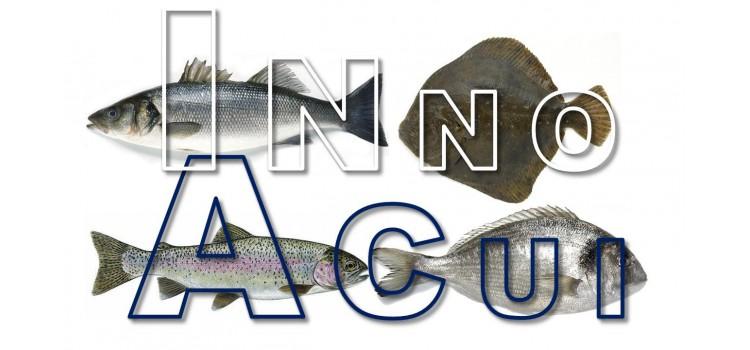 Proyecto INNOACUI, Incorporación de Innovación en relación al Bienestar Animal en Peces de Acuicultura de España