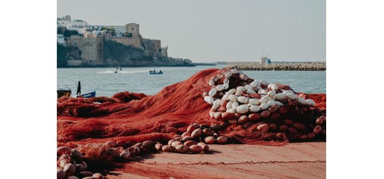 El sector pesquero comunica a la Comisión Europea medidas urgentes para garantizar la actividad presquera frente al impacto del COVID-19