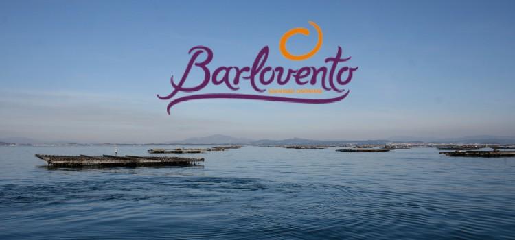 BarloventoS.A obtiene certificado IFS Global Markets Food