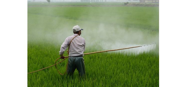 Informe REFIT sobre productos fitosanitarios