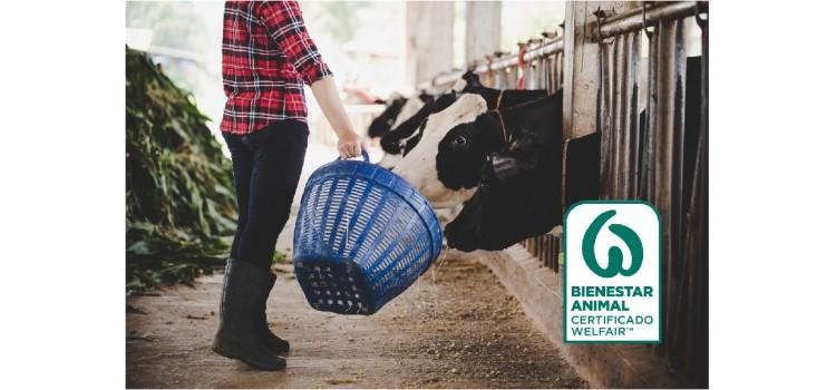 Certificación Welfair, el nuevo sello del bienestar animal
